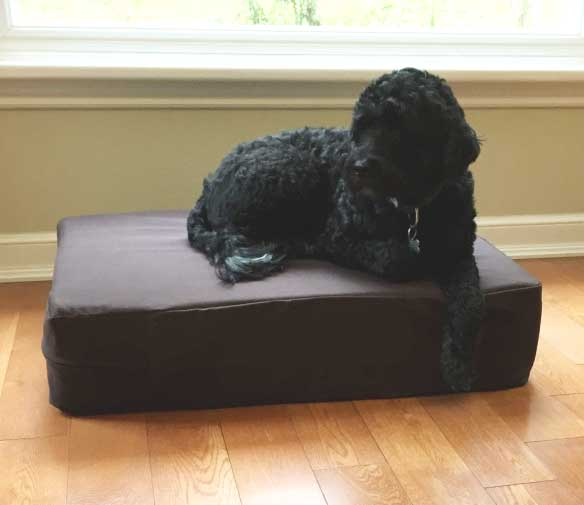 Dog Dozer Memory Foam Dog Bed 8